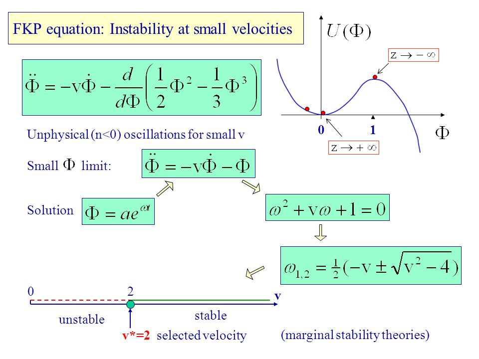 FKP equation: Instability at small velocities Solution 10 Unphysical (n<0) oscillations for small v Small limit: 02 v unstable stable v*=2 selected velocity (marginal stability theories)