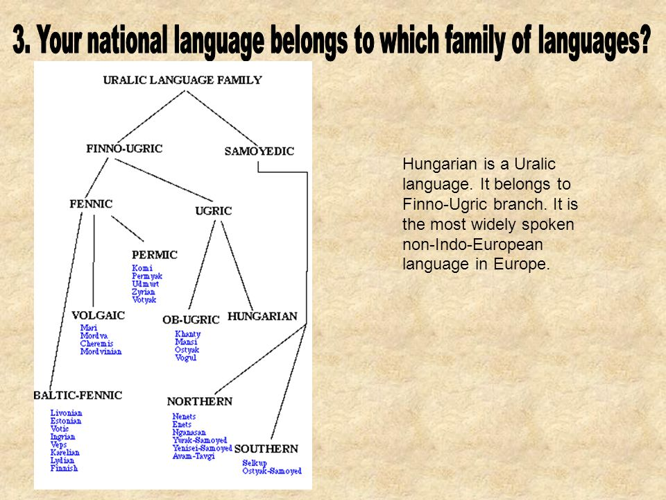 Hungarian is a Uralic language. It belongs to Finno-Ugric branch.