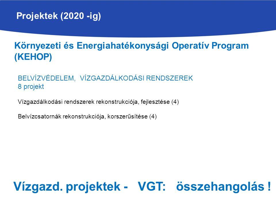 Projektek (2020 -ig) Környezeti és Energiahatékonysági Operatív Program (KEHOP) BELVÍZVÉDELEM, VÍZGAZDÁLKODÁSI RENDSZEREK 8 projekt Vízgazdálkodási rendszerek rekonstrukciója, fejlesztése (4) Belvízcsatornák rekonstrukciója, korszerűsítése (4) Vízgazd.