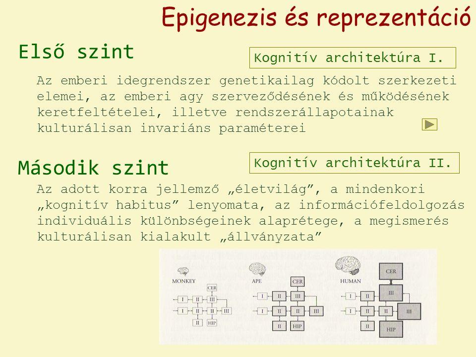 Információ mint mintázat / alakzat / reprezentáció neuronhálózat neurális aktivitás exogramok tudatosság 1.2.Az információfogalom értelmezései engramok 1.