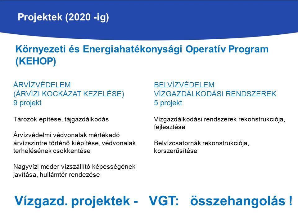 Projektek (2020 -ig) ÁRVÍZVÉDELEM (ÁRVÍZI KOCKÁZAT KEZELÉSE) 9 projekt Tározók építése, tájgazdálkodás Árvízvédelmi védvonalak mértékadó árvízszintre történő kiépítése, védvonalak terhelésének csökkentése Nagyvízi meder vízszállító képességének javítása, hullámtér rendezése Környezeti és Energiahatékonysági Operatív Program (KEHOP) BELVÍZVÉDELEM VÍZGAZDÁLKODÁSI RENDSZEREK 5 projekt Vízgazdálkodási rendszerek rekonstrukciója, fejlesztése Belvízcsatornák rekonstrukciója, korszerűsítése Vízgazd.