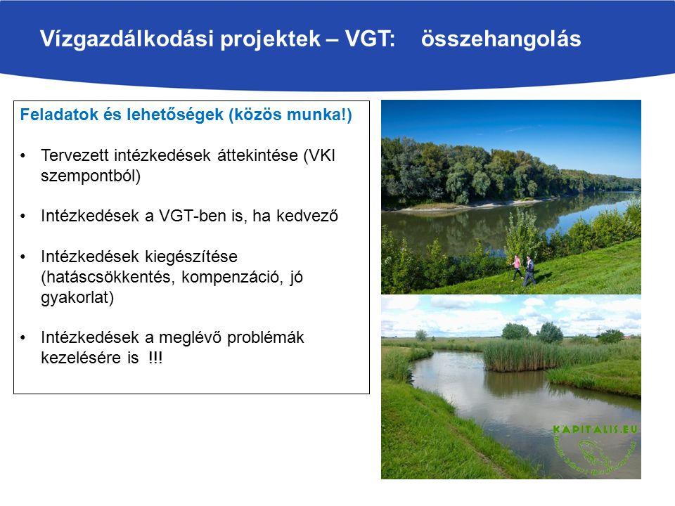Vízgazdálkodási projektek – VGT: összehangolás Feladatok és lehetőségek (közös munka!) Tervezett intézkedések áttekintése (VKI szempontból) Intézkedések a VGT-ben is, ha kedvező Intézkedések kiegészítése (hatáscsökkentés, kompenzáció, jó gyakorlat) Intézkedések a meglévő problémák kezelésére is !!!