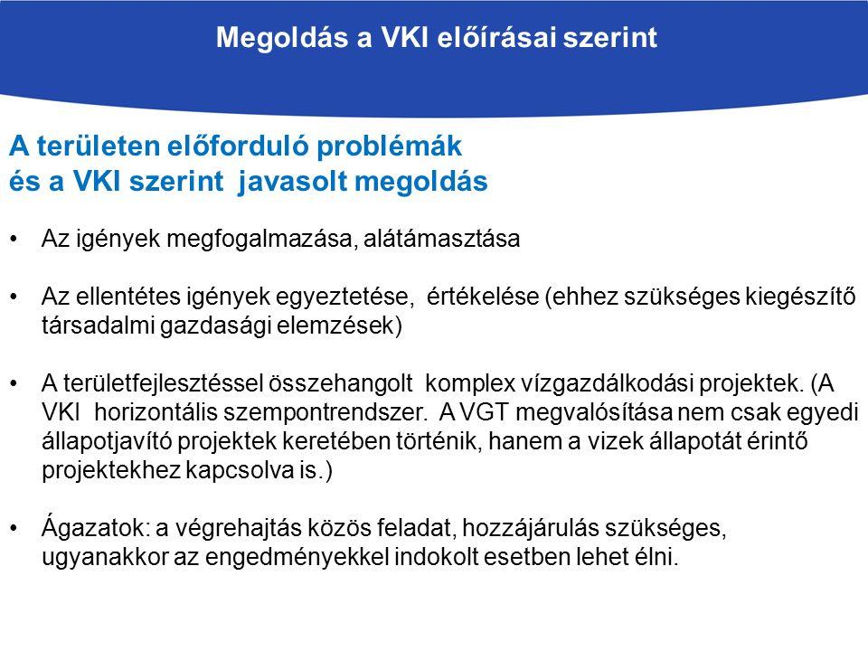 Megoldás a VKI előírásai szerint A területen előforduló problémák és a VKI szerint javasolt megoldás Az igények megfogalmazása, alátámasztása Az ellentétes igények egyeztetése, értékelése (ehhez szükséges kiegészítő társadalmi gazdasági elemzések) A területfejlesztéssel összehangolt komplex vízgazdálkodási projektek.