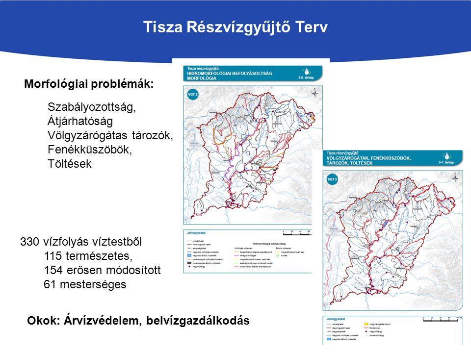 Tisza Részvízgyűjtő Terv Morfológiai problémák: 330 vízfolyás víztestből 115 természetes, 154 erősen módosított 61 mesterséges Okok: Árvízvédelem, belvízgazdálkodás Szabályozottság, Átjárhatóság Völgyzárógátas tározók, Fenékküszöbök, Töltések