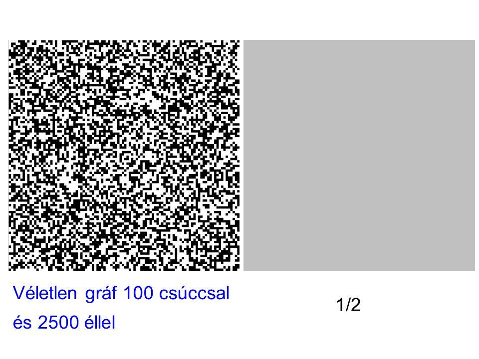 Véletlen gráf 100 csúccsal és 2500 éllel 1/2