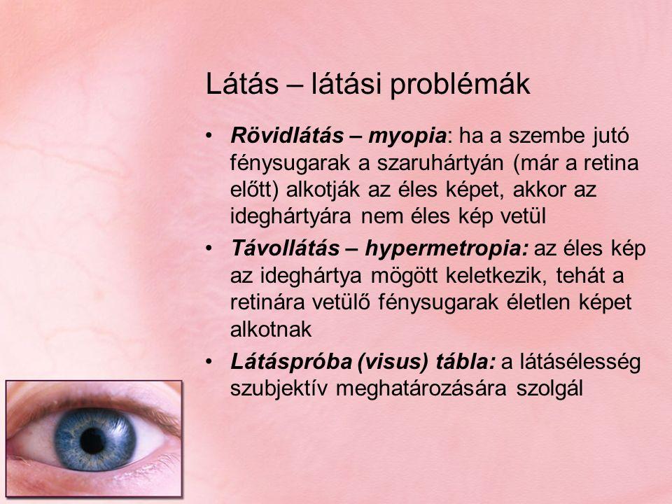 Látás – látási problémák Rövidlátás – myopia: ha a szembe jutó fénysugarak a szaruhártyán (már a retina előtt) alkotják az éles képet, akkor az ideghá