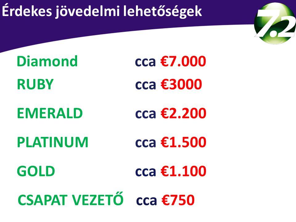 Průměrný měsíční příjem dle pozice CSAPAT VEZETŐ cca €750 GOLD cca €1.100 PLATINUM cca €1.500 EMERALD cca €2.200 RUBY cca €3000 Diamondcca €7.000 Érde