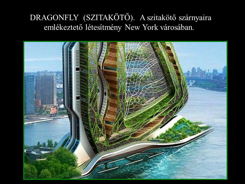 DRAGONFLY (SZITAKÖTŐ). A szitakötő szárnyaira emlékeztető létesítmény New York városában.