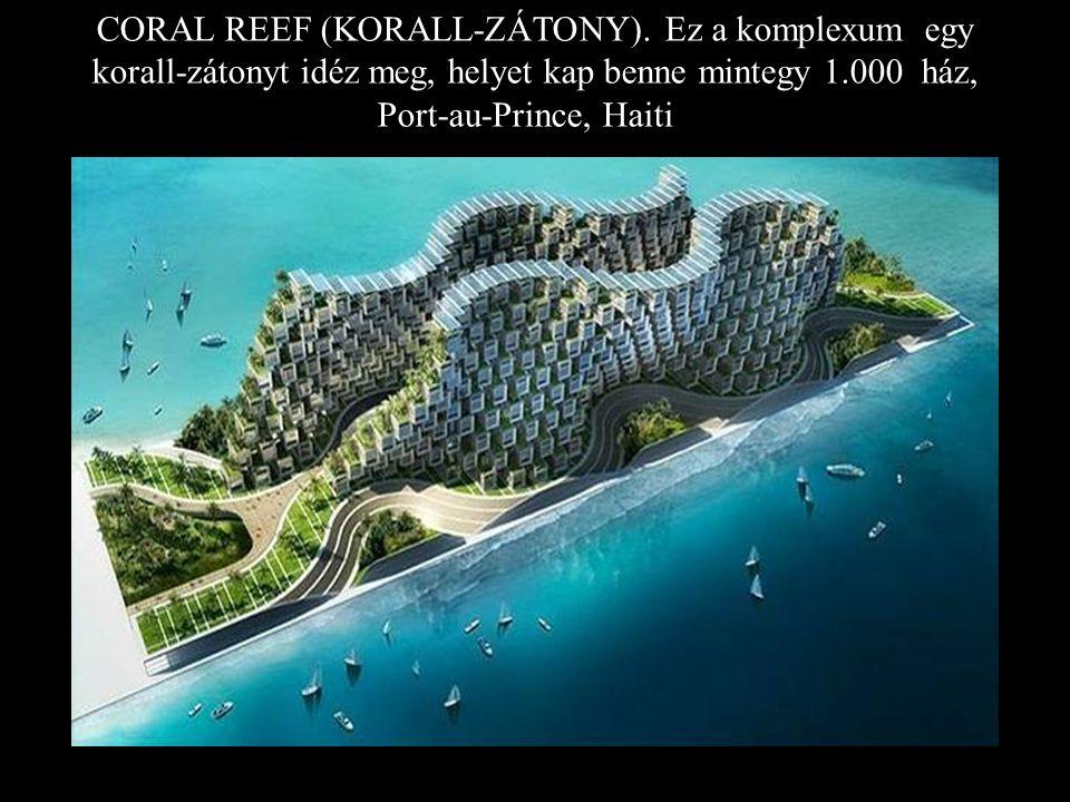 CORAL REEF (KORALL-ZÁTONY).