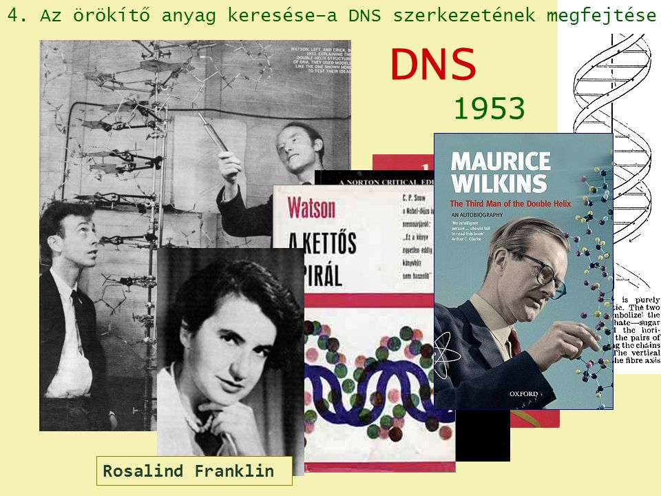 James D.Watson Francis Crick 1953 DNS 4.