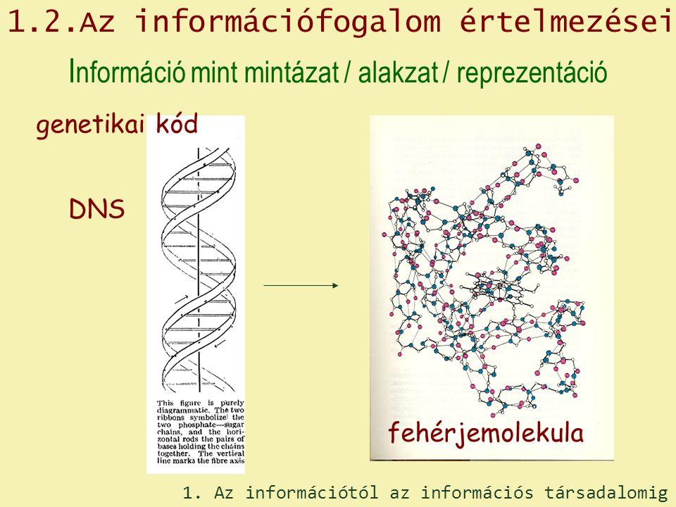 1.2.Az információfogalom értelmezései I nformáció mint mintázat / alakzat / reprezentáció DNS genetikai kód fehérjemolekula 1.