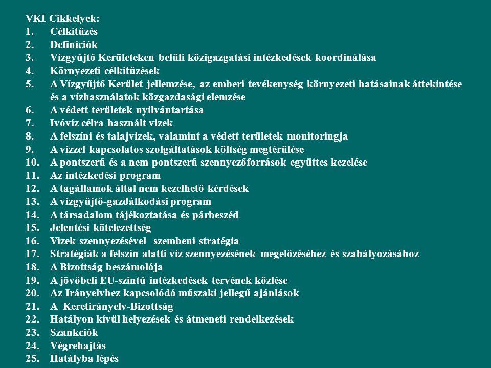 VKI Cikkelyek: 1.Célkitűzés 2.Definíciók 3.Vízgyűjtő Kerületeken belüli közigazgatási intézkedések koordinálása 4.Környezeti célkitűzések 5.A Vízgyűjtő Kerület jellemzése, az emberi tevékenység környezeti hatásainak áttekintése és a vízhasználatok közgazdasági elemzése 6.A védett területek nyilvántartása 7.Ivóvíz célra használt vizek 8.A felszíni és talajvizek, valamint a védett területek monitoringja 9.A vízzel kapcsolatos szolgáltatások költség megtérülése 10.A pontszerű és a nem pontszerű szennyezőforrások együttes kezelése 11.Az intézkedési program 12.A tagállamok által nem kezelhető kérdések 13.A vízgyűjtő-gazdálkodási program 14.A társadalom tájékoztatása és párbeszéd 15.Jelentési kötelezettség 16.Vizek szennyezésével szembeni stratégia 17.Stratégiák a felszín alatti víz szennyezésének megelőzéséhez és szabályozásához 18.A Bizottság beszámolója 19.A jövőbeli EU-szintű intézkedések tervének közlése 20.Az Irányelvhez kapcsolódó műszaki jellegű ajánlások 21.A Keretirányelv-Bizottság 22.Hatályon kívül helyezések és átmeneti rendelkezések 23.Szankciók 24.Végrehajtás 25.Hatályba lépés
