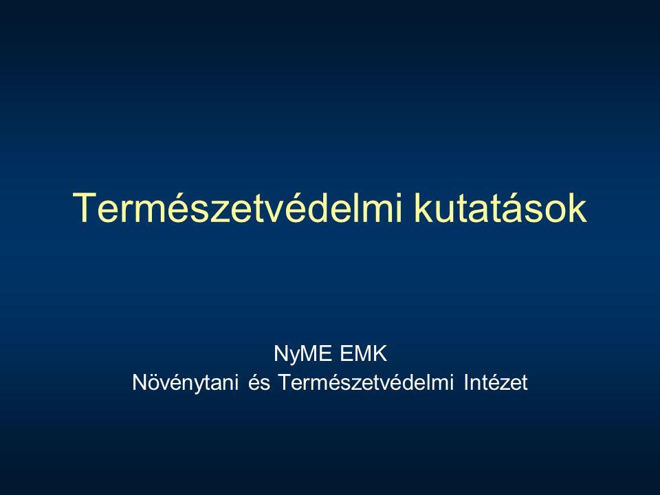 Diverzitás (Csabai& Cser):  Def.: valamilyen sokféleség, valamilyen mennyiségi megjelenését jelenti (Juhász-Nagy Pál).