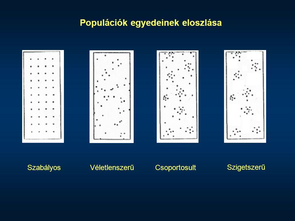 SzabályosVéletlenszerűCsoportosult Szigetszerű Populációk egyedeinek eloszlása