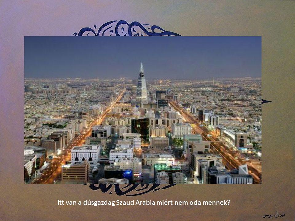 DUBAI gazdagabb, mint Németország, miért nem oda mennek, hiszen Ők muszlim testvérek !