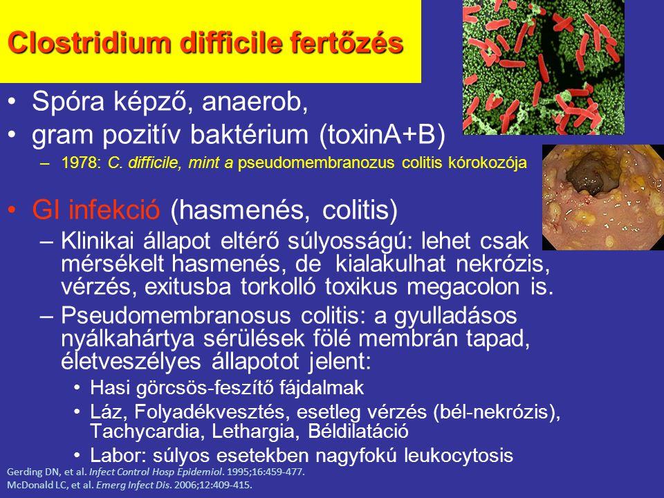 Clostridium difficile fertőzés Spóra képző, anaerob, gram pozitív baktérium (toxinA+B) –1978: C. difficile, mint a pseudomembranozus colitis kórokozój
