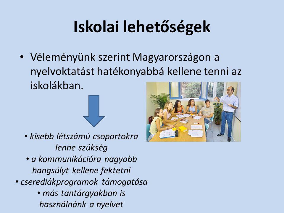 A nyelvtanulás fontossága Külföldön is meg tudjuk értetni magunk, ott tanulhatunk, és munkát vállalhatunk.