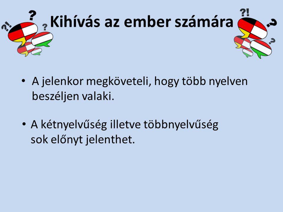 Készítette: Széchenyi István Gimnázium Sopron 9. d osztály