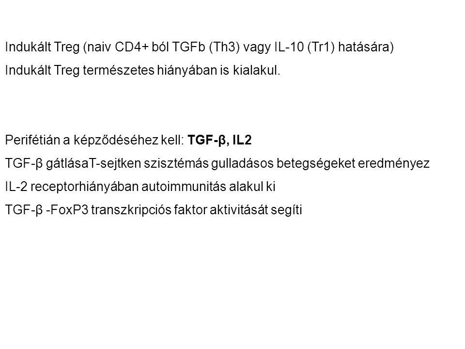 Indukált Treg (naiv CD4+ ból TGFb (Th3) vagy IL-10 (Tr1) hatására) Indukált Treg természetes hiányában is kialakul. Perifétián a képződéséhez kell: TG