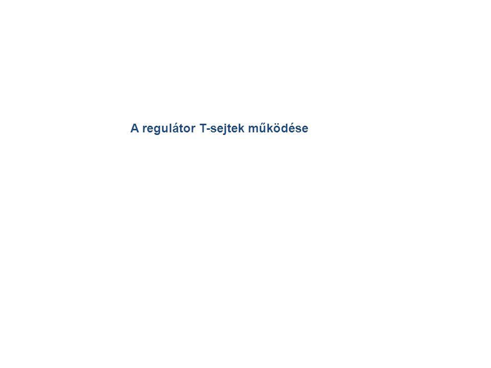 A regulátor T-sejtek működése