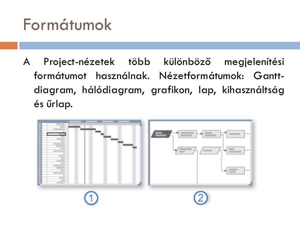 Formátumok A Project-nézetek több különböző megjelenítési formátumot használnak.