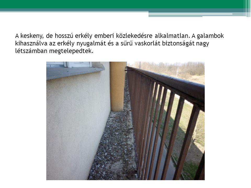 A keskeny, de hosszú erkély emberi közlekedésre alkalmatlan.