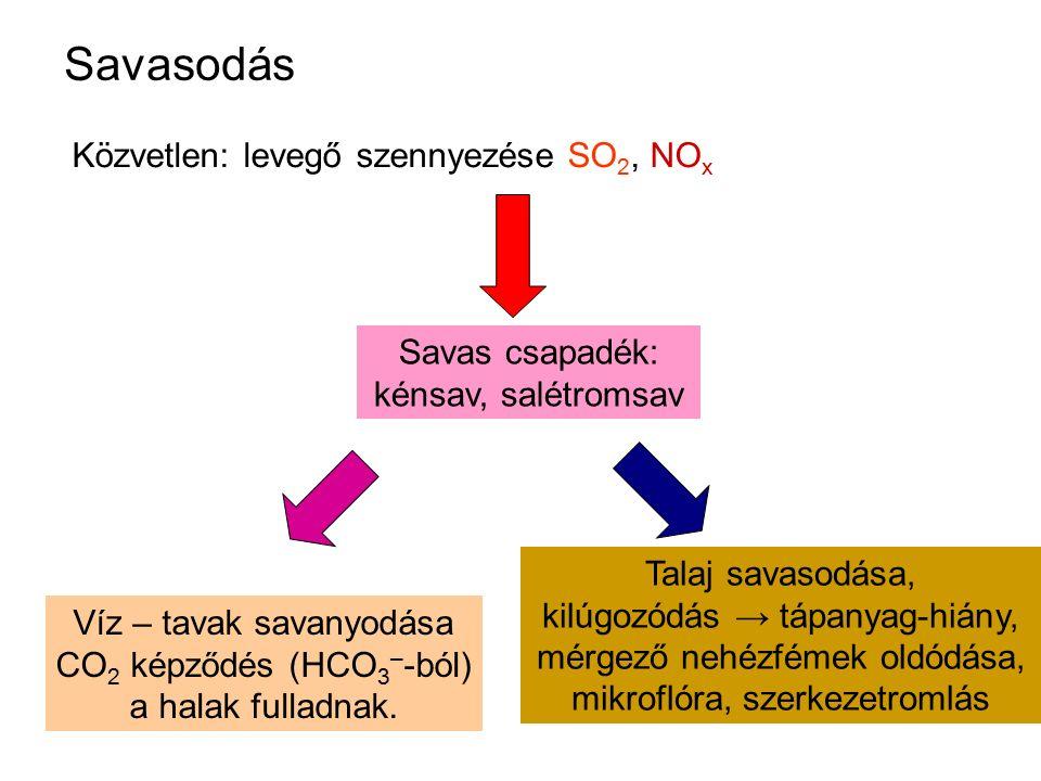Savasodás Közvetlen: levegő szennyezése SO 2, NO x Víz – tavak savanyodása CO 2 képződés (HCO 3 – -ból) a halak fulladnak. Talaj savasodása, kilúgozód