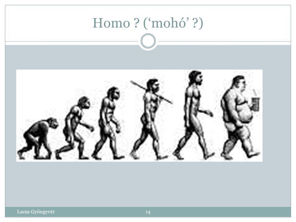 Homo 'sitting'