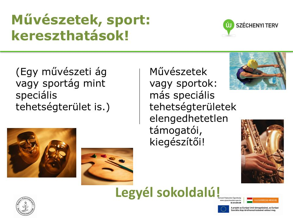 Művészetek vagy sportok: más speciális tehetségterületek elengedhetetlen támogatói, kiegészítői.