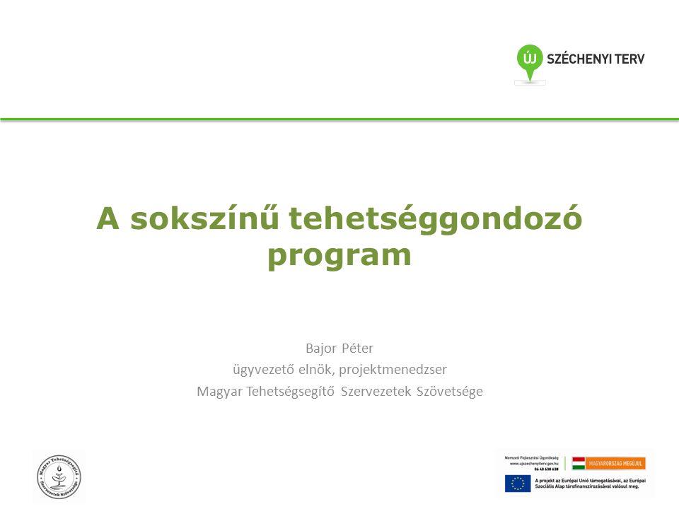 A sokszínű tehetséggondozó program Bajor Péter ügyvezető elnök, projektmenedzser Magyar Tehetségsegítő Szervezetek Szövetsége