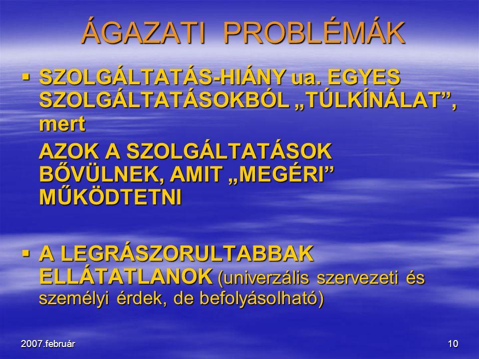 """2007.február10 ÁGAZATI PROBLÉMÁK ÁGAZATI PROBLÉMÁK  SZOLGÁLTATÁS-HIÁNY ua. EGYES SZOLGÁLTATÁSOKBÓL """"TÚLKÍNÁLAT"""", mert AZOK A SZOLGÁLTATÁSOK BŐVÜLNEK,"""