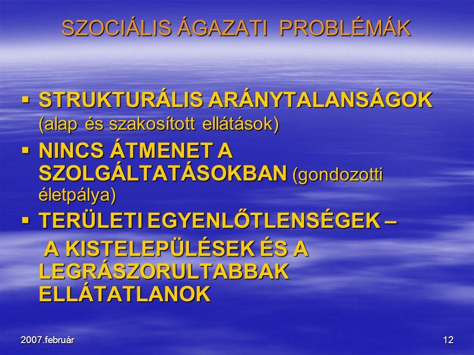 2007.február12 SZOCIÁLIS ÁGAZATI PROBLÉMÁK  STRUKTURÁLIS ARÁNYTALANSÁGOK (alap és szakosított ellátások)  NINCS ÁTMENET A SZOLGÁLTATÁSOKBAN (gondozo