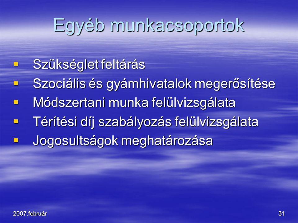 2007.február31 Egyéb munkacsoportok  Szükséglet feltárás  Szociális és gyámhivatalok megerősítése  Módszertani munka felülvizsgálata  Térítési díj