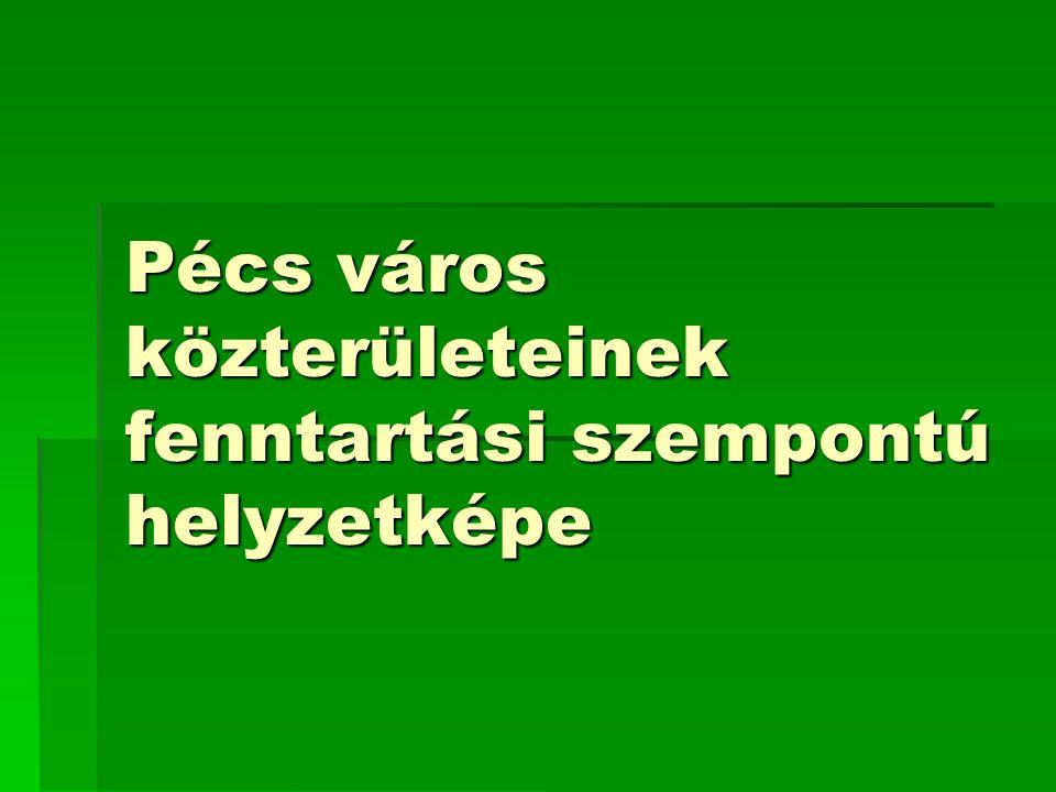 Pécs város közterületeinek fenntartási szempontú helyzetképe