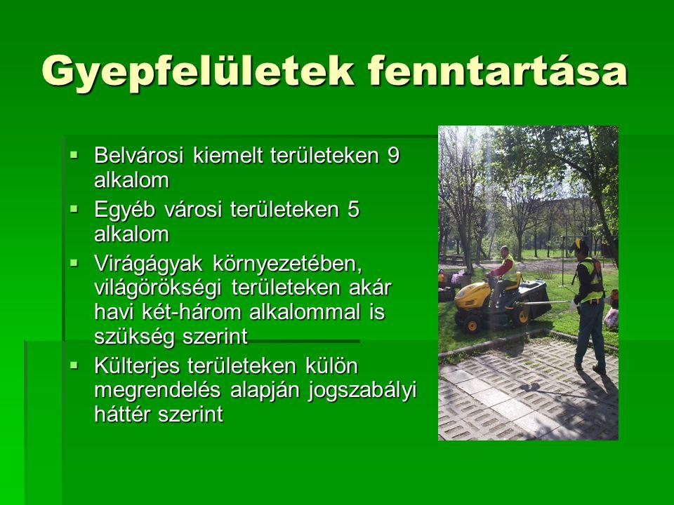 Gyepfelületek fenntartása  Belvárosi kiemelt területeken 9 alkalom  Egyéb városi területeken 5 alkalom  Virágágyak környezetében, világörökségi területeken akár havi két-három alkalommal is szükség szerint  Külterjes területeken külön megrendelés alapján jogszabályi háttér szerint