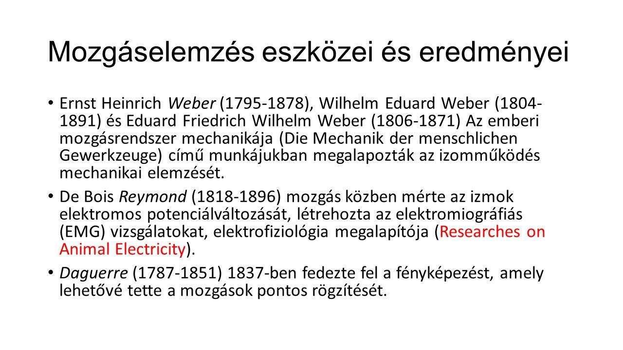 Mozgáselemzés eszközei és eredményei Ernst Heinrich Weber (1795-1878), Wilhelm Eduard Weber (1804- 1891) és Eduard Friedrich Wilhelm Weber (1806-1871) Az emberi mozgásrendszer mechanikája (Die Mechanik der menschlichen Gewerkzeuge) című munkájukban megalapozták az izomműködés mechanikai elemzését.