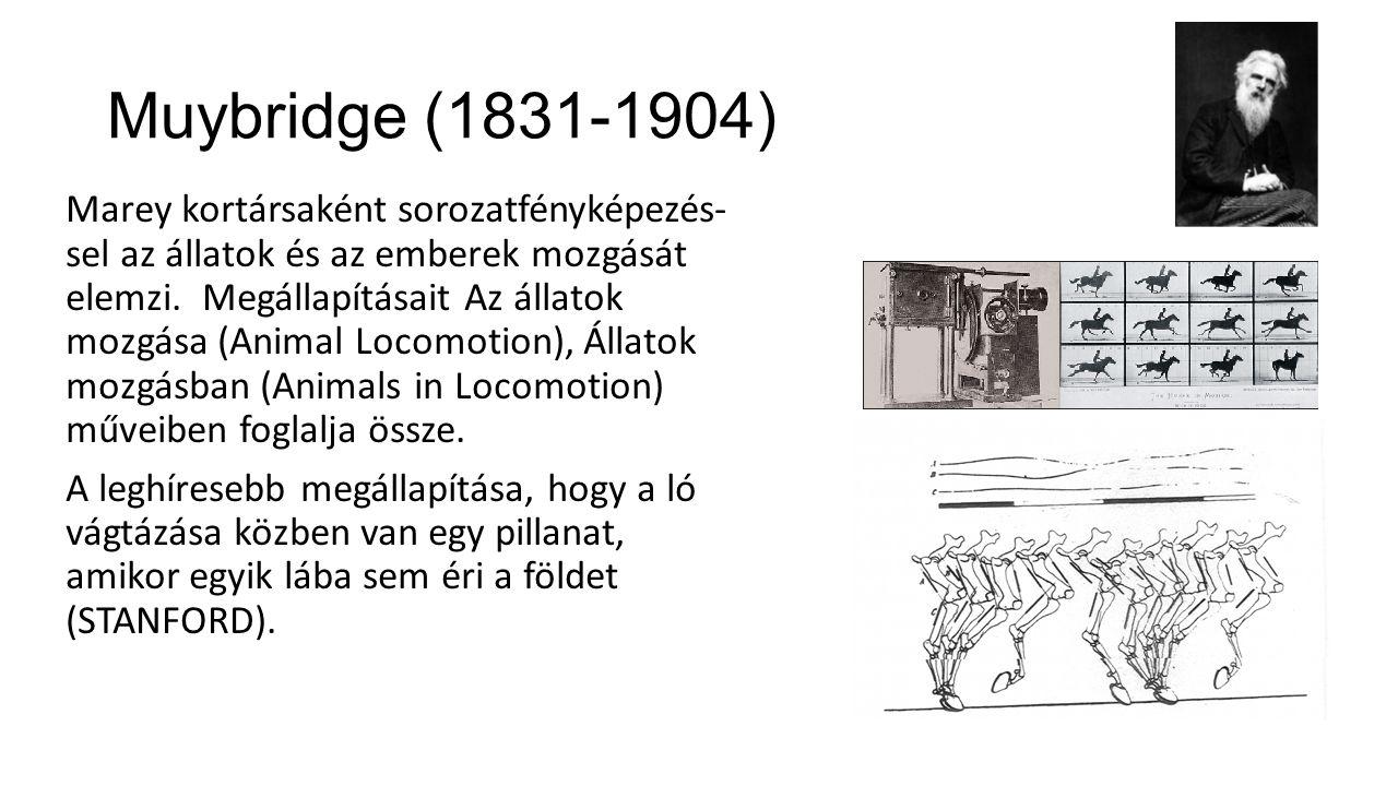 Muybridge (1831-1904) Marey kortársaként sorozatfényképezés- sel az állatok és az emberek mozgását elemzi.