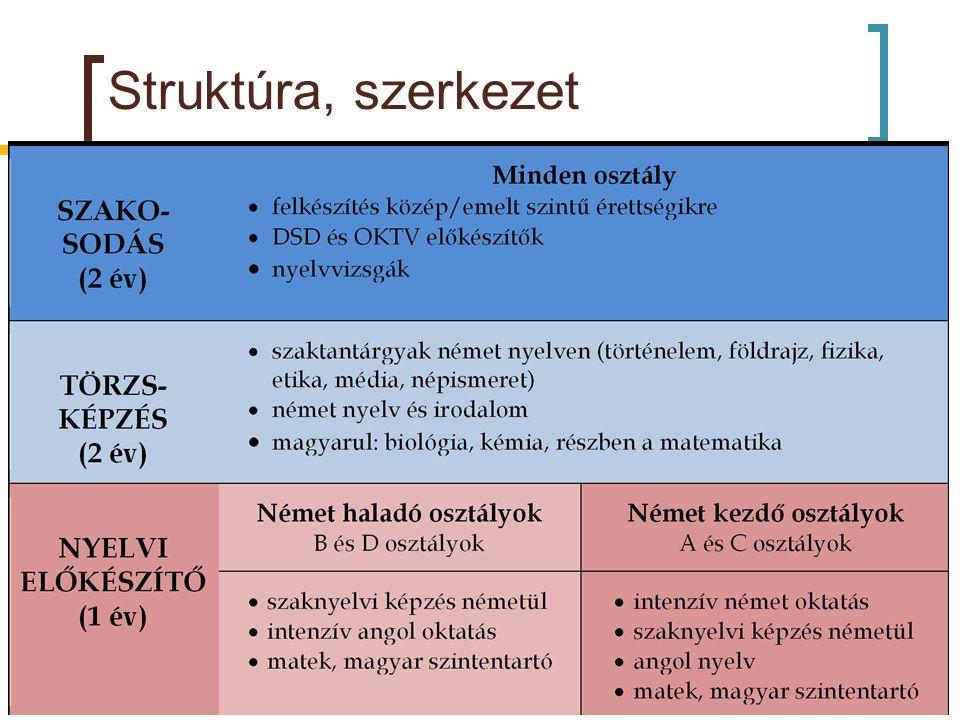 Struktúra, szerkezet ~ 300 diák, ~40 tanár 15-20 fős csoportok – jó közösség, sok figyelem!!!