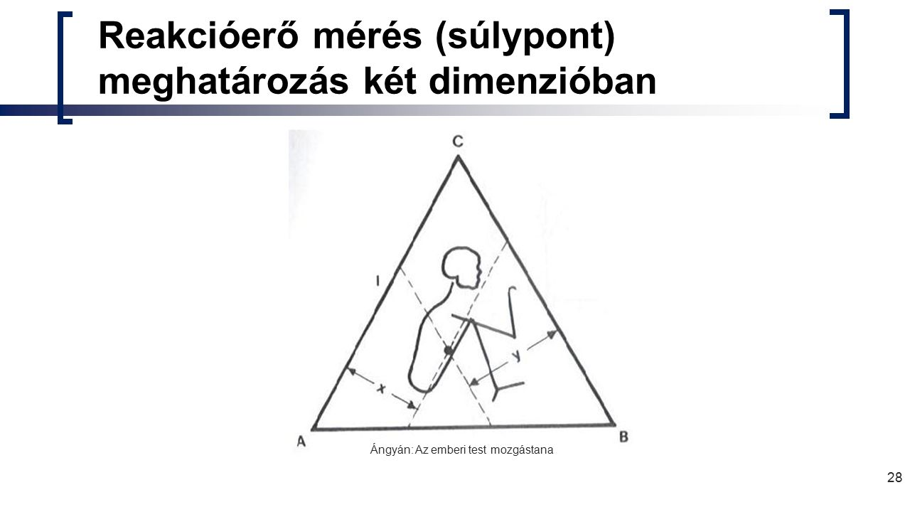 28 Reakcióerő mérés (súlypont) meghatározás két dimenzióban Ángyán: Az emberi test mozgástana