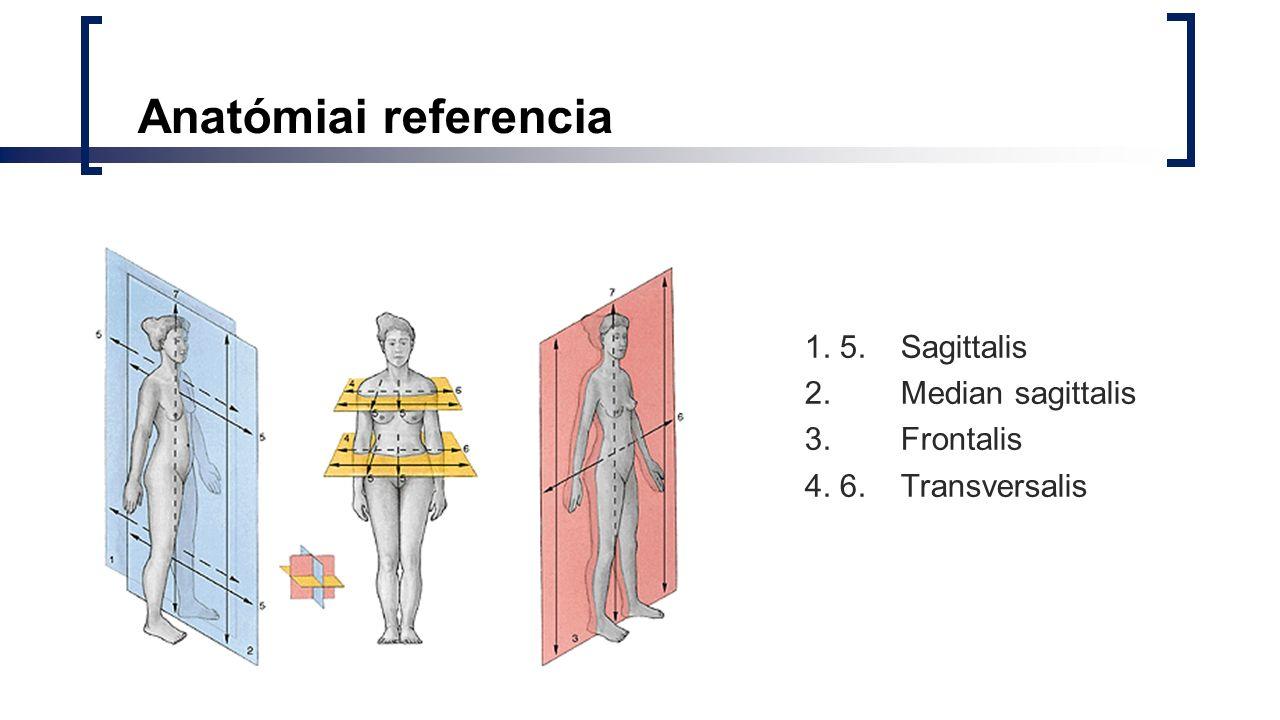 Anatómiai referencia 1. 5. Sagittalis 2. Median sagittalis 3. Frontalis 4. 6. Transversalis