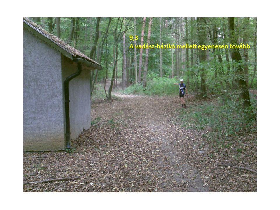 9,3 A vadász-házikó mellett egyenesen tovább