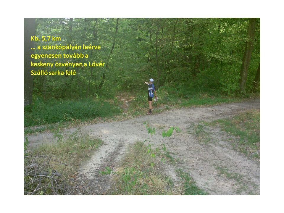 Kb. 5,7 km … a szánkópályán leérve egyenesen tovább a keskeny ösvényen a Lővér Szálló sarka felé