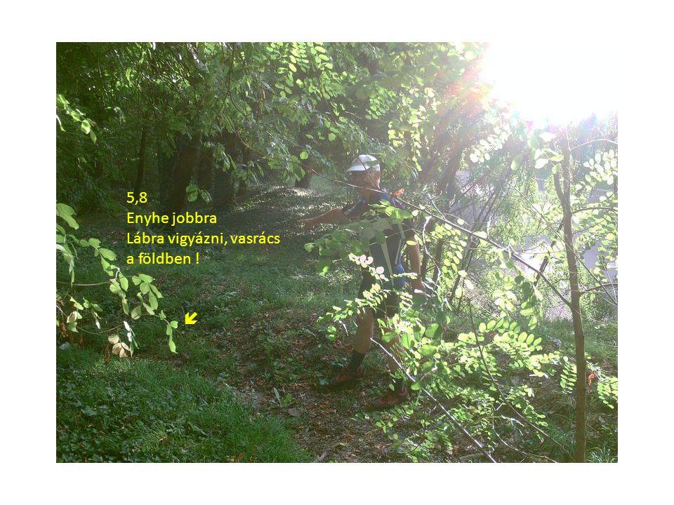 5,8 Enyhe jobbra Lábra vigyázni, vasrács a földben ! 