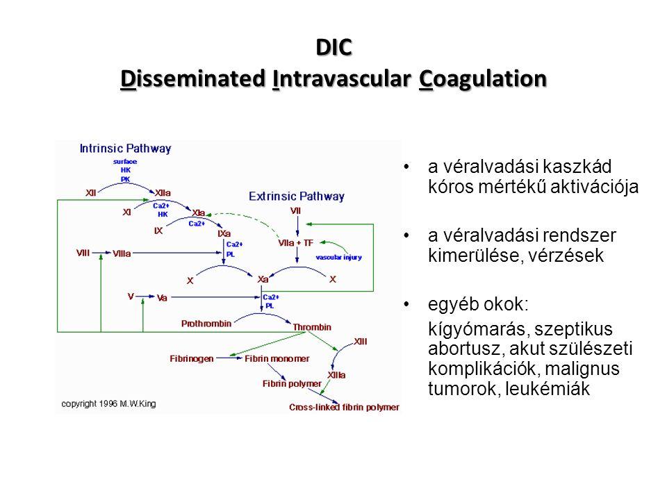 DIC Disseminated Intravascular Coagulation a véralvadási kaszkád kóros mértékű aktivációja a véralvadási rendszer kimerülése, vérzések egyéb okok: kígyómarás, szeptikus abortusz, akut szülészeti komplikációk, malignus tumorok, leukémiák