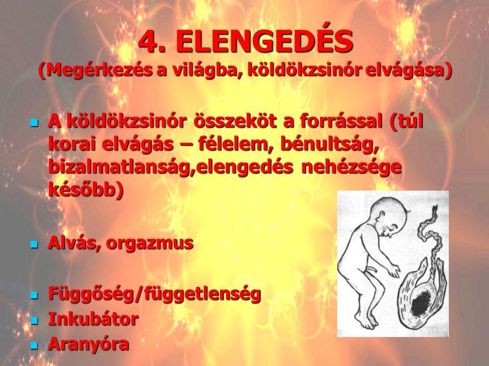 4. ELENGEDÉS (Megérkezés a világba, köldökzsinór elvágása) A köldökzsinór összeköt a forrással (túl korai elvágás – félelem, bénultság, bizalmatlanság