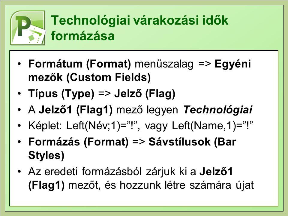 Technológiai várakozási idők formázása Formátum (Format) menüszalag => Egyéni mezők (Custom Fields) Típus (Type) => Jelző (Flag) A Jelző1 (Flag1) mező