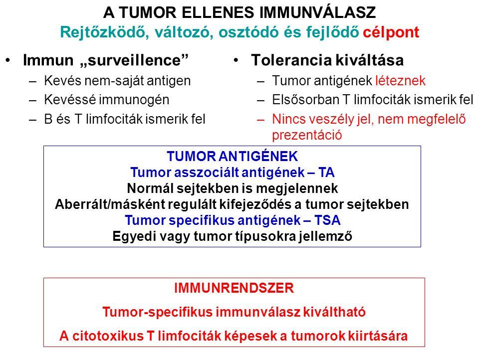 """A TUMOR ELLENES IMMUNVÁLASZ Rejtőzködő, változó, osztódó és fejlődő célpont Immun """"surveillence –Kevés nem-saját antigen –Kevéssé immunogén –B és T limfociták ismerik fel Tolerancia kiváltása –Tumor antigének léteznek –Elsősorban T limfociták ismerik fel –Nincs veszély jel, nem megfelelő prezentáció TUMOR ANTIGÉNEK Tumor asszociált antigének – TA Normál sejtekben is megjelennek Aberrált/másként regulált kifejeződés a tumor sejtekben Tumor specifikus antigének – TSA Egyedi vagy tumor típusokra jellemző IMMUNRENDSZER Tumor-specifikus immunválasz kiváltható A citotoxikus T limfociták képesek a tumorok kiirtására"""