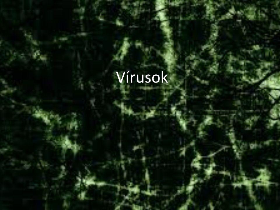Fogalma Rejtőzködik Önmagát sokszorosítja Kárt okoz Mindhárom feltétel Bármelyik nem Vírus Vírus rokon
