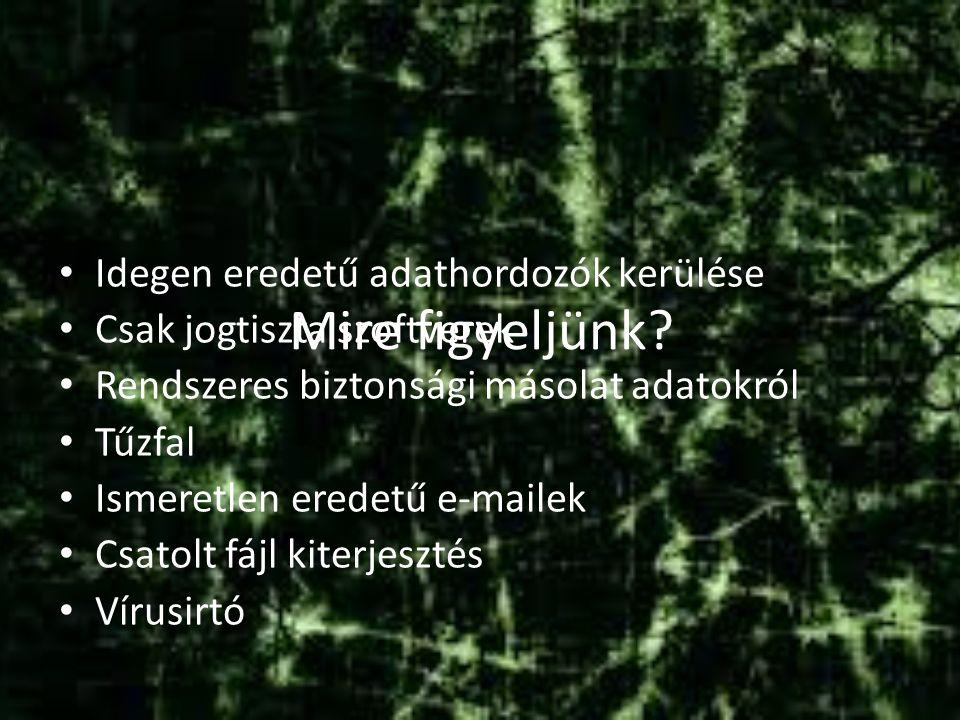 Vírus fajták Fájlvírus Bootvírus Makróvírus Mailvírus futtatáskor Lemez használat megnyitáskor érkezéskor Futtatható fájl belsejében Boot területek egyikében Dokumentumok makróiban Levelező szerver és email