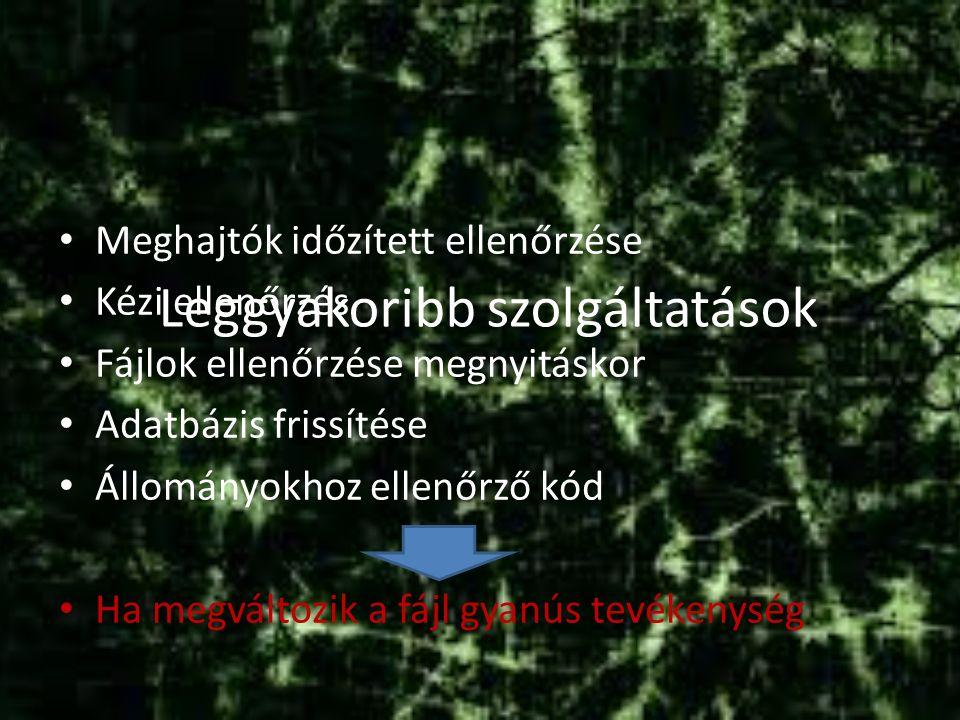 Leggyakoribb szolgáltatások Meghajtók időzített ellenőrzése Kézi ellenőrzés Fájlok ellenőrzése megnyitáskor Adatbázis frissítése Állományokhoz ellenőrző kód Ha megváltozik a fájl gyanús tevékenység